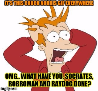 IT'S THIS CHUCK NORRIS GIF EVERYWHERE OMG.. WHAT HAVE YOU, SOCRATES, ROBROMAN AND RAYDOG DONE? | made w/ Imgflip meme maker