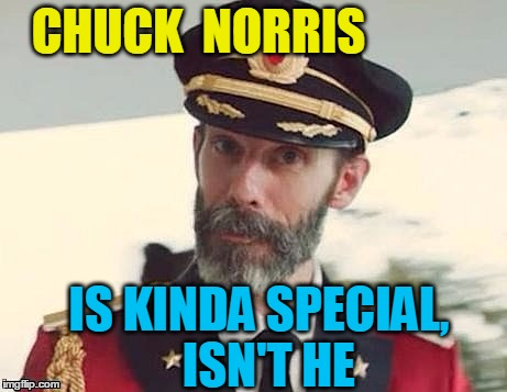 Captain Obvious | CHUCK  NORRIS IS KINDA SPECIAL,  ISN'T HE | image tagged in captain obvious | made w/ Imgflip meme maker