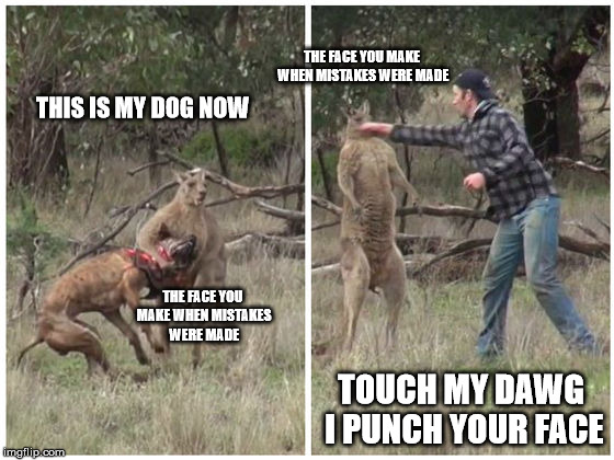 Touch My Dawg I Punch Your Face | THIS IS MY DOG NOW TOUCH MY DAWG I PUNCH YOUR FACE THE FACE YOU MAKE WHEN MISTAKES WERE MADE THE FACE YOU MAKE WHEN MISTAKES WERE MADE | image tagged in touch my dawg i punch your face,so i guess you can say things are getting pretty serious,i dare you,bad pun dog,one punch man,ch | made w/ Imgflip meme maker