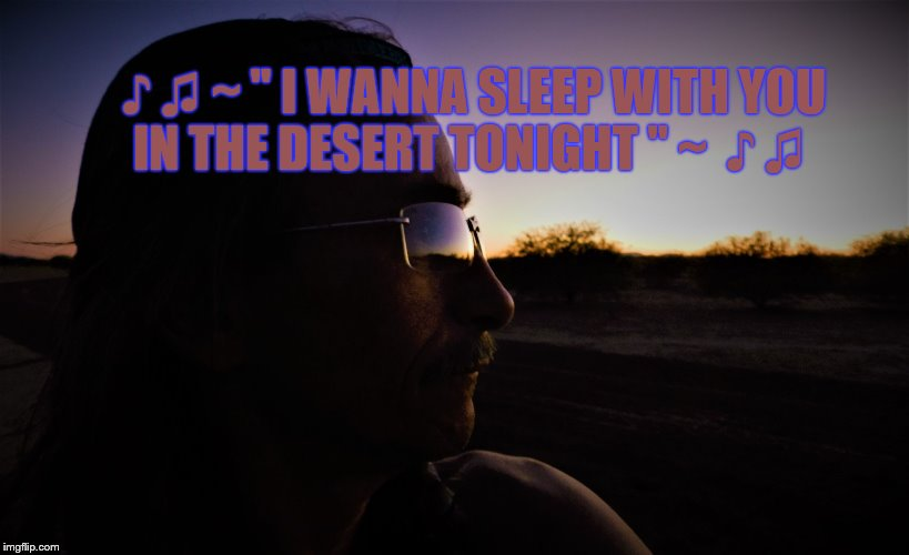 "♪ ♫ ~ "" I WANNA SLEEP WITH YOU IN THE DESERT TONIGHT "" ~  ♪ ♫ 