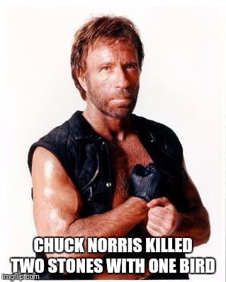 The Legend Goes As Follows! Chuck Norris Week ... A Sir_Unknown Event | CHUCK NORRIS KILLED TWO STONES WITH ONE BIRD | image tagged in memes,chuck norris flex,chuck norris,chuck norris week,funny | made w/ Imgflip meme maker