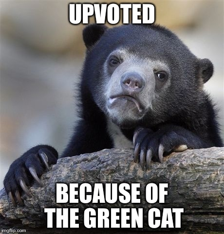 Confession Bear Meme | UPVOTED BECAUSE OF THE GREEN CAT | image tagged in memes,confession bear | made w/ Imgflip meme maker