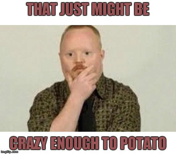 THAT JUST MIGHT BE CRAZY ENOUGH TO POTATO | made w/ Imgflip meme maker
