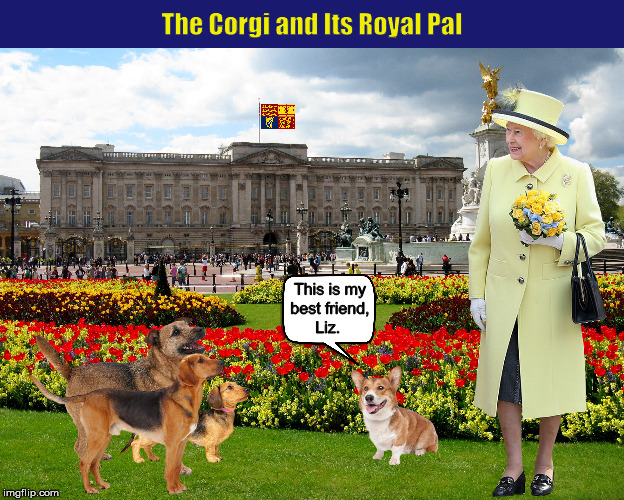 The Corgi and Its Royal Pal | image tagged in corgi,queen elizabeth,new yorker cartoon,best friends,dogs,funny memes | made w/ Imgflip meme maker