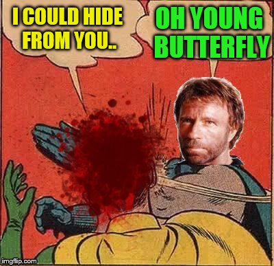 I COULD HIDE FROM YOU.. OH YOUNG BUTTERFLY | made w/ Imgflip meme maker