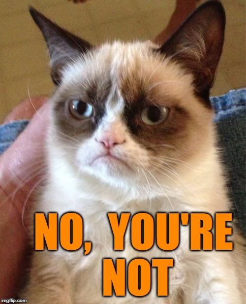 Grumpy Cat Meme | NO,  YOU'RE NOT | image tagged in memes,grumpy cat | made w/ Imgflip meme maker