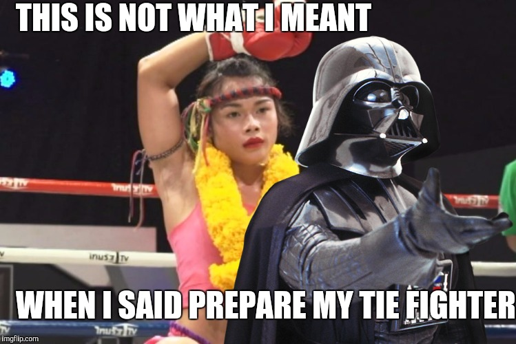 That's no lady, that's my boy. May the Fourth be with you/ Comic Book Character Week | THIS IS NOT WHAT I MEANT WHEN I SAID PREPARE MY TIE FIGHTER | image tagged in comic book week,may the 4th,tie fighter,thai fighter,transgender,memes | made w/ Imgflip meme maker