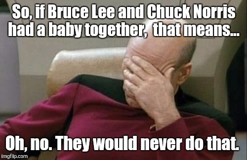 Captain Picard Facepalm Meme | So, if Bruce Lee and Chuck Norris had a baby together,  that means... Oh, no. They would never do that. | image tagged in memes,captain picard facepalm | made w/ Imgflip meme maker