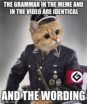 Grammar Nazi | THE GRAMMAR IN THE MEME AND IN THE VIDEO ARE IDENTICAL AND THE WORDING | image tagged in grammar nazi | made w/ Imgflip meme maker