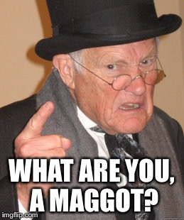 Back In My Day Meme | WHAT ARE YOU, A MAGGOT? | image tagged in memes,back in my day | made w/ Imgflip meme maker
