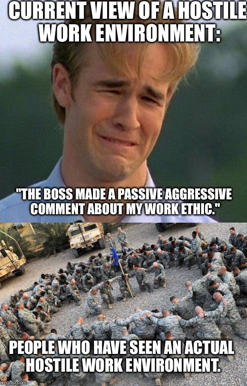 "CURRENT VIEW OF A HOSTILE WORK ENVIRONMENT: ""THE BOSS MADE A PASSIVE AGGRESSIVE COMMENT ABOUT MY WORK ETHIC."" PEOPLE WHO HAVE SEEN AN ACTUAL 