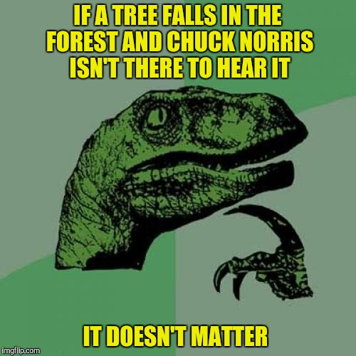Philosoraptor Meme | IF A TREE FALLS IN THE FOREST AND CHUCK NORRIS ISN'T THERE TO HEAR IT IT DOESN'T MATTER | image tagged in memes,philosoraptor | made w/ Imgflip meme maker