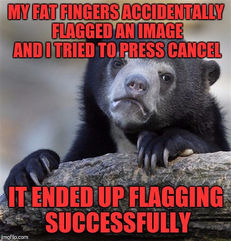 Confession Bear Meme | MY FAT FINGERS ACCIDENTALLY FLAGGED AN IMAGE AND I TRIED TO PRESS CANCEL IT ENDED UP FLAGGING SUCCESSFULLY | image tagged in memes,confession bear | made w/ Imgflip meme maker