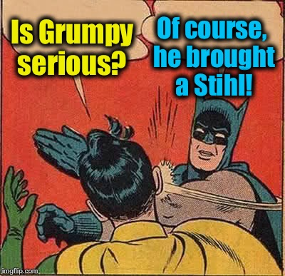 Batman Slapping Robin Meme | Is Grumpy serious? Of course, he brought a Stihl! | image tagged in memes,batman slapping robin | made w/ Imgflip meme maker