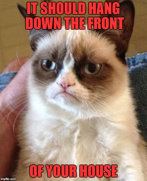 Grumpy Cat Meme | IT SHOULD HANG DOWN THE FRONT OF YOUR HOUSE | image tagged in memes,grumpy cat | made w/ Imgflip meme maker