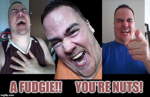 LMAO! | A FUDGIE!!      YOU'RE NUTS! | image tagged in lmao | made w/ Imgflip meme maker