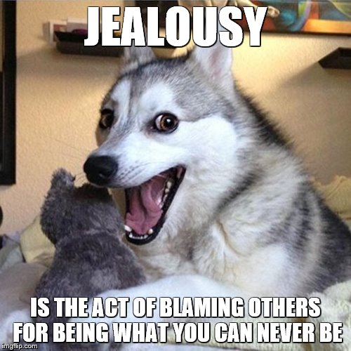 Its Not About HAVING its About Being. You Might Get Things, But Things Can't Make the Jealousy Go Away. | JEALOUSY IS THE ACT OF BLAMING OTHERS FOR BEING WHAT YOU CAN NEVER BE | image tagged in bad pun dog,memes,funny,jealous,jealousy | made w/ Imgflip meme maker