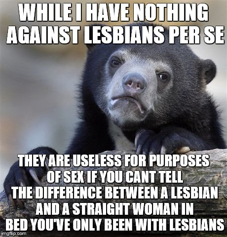 Confession Bear Meme | WHILE I HAVE NOTHING AGAINST LESBIANS PER SE THEY ARE USELESS FOR PURPOSES OF SEX IF YOU CANT TELL THE DIFFERENCE BETWEEN A LESBIAN AND A ST | image tagged in memes,confession bear | made w/ Imgflip meme maker