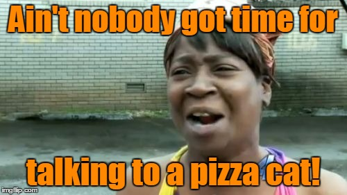 Aint Nobody Got Time For That Meme | Ain't nobody got time for talking to a pizza cat! | image tagged in memes,aint nobody got time for that | made w/ Imgflip meme maker