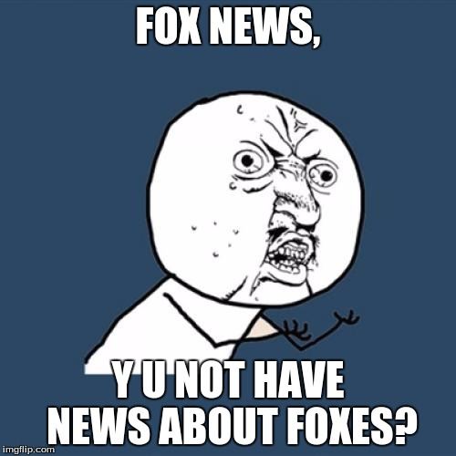 Y U No Meme | FOX NEWS, Y U NOT HAVE NEWS ABOUT FOXES? | image tagged in memes,y u no | made w/ Imgflip meme maker