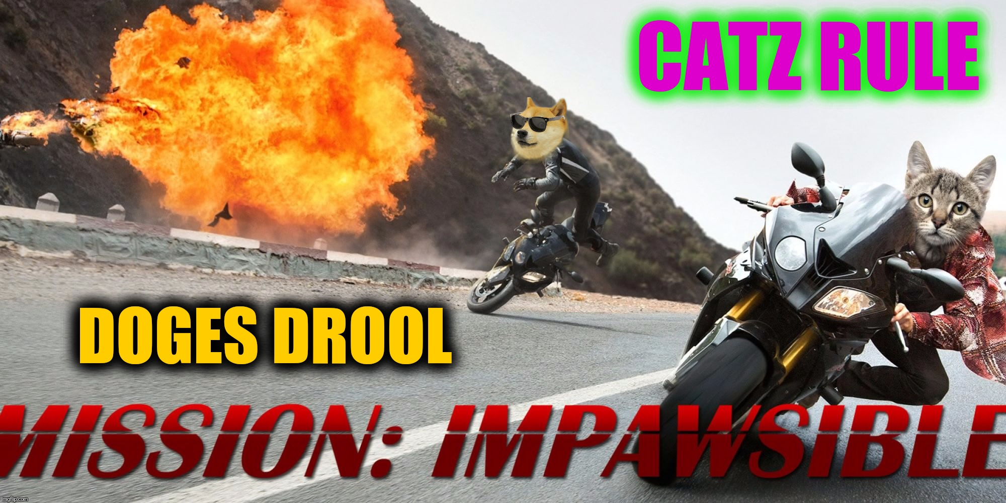 MISSION: IMPAWSSIBLE | DOGES DROOL CATZ RULE | image tagged in memes,mission impossible,mission impawssible,cats,dogs,its raining catz and doges | made w/ Imgflip meme maker
