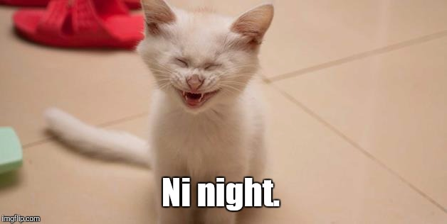 Cat Laughing | Ni night. | image tagged in cat laughing | made w/ Imgflip meme maker