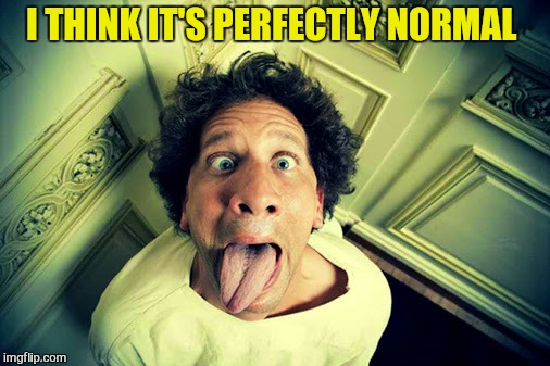 I THINK IT'S PERFECTLY NORMAL | made w/ Imgflip meme maker