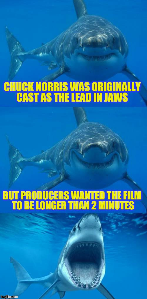 Chuck Norris Week ( A Sir_Unknown Event! ) | CHUCK NORRIS WAS ORIGINALLY CAST AS THE LEAD IN JAWS BUT PRODUCERS WANTED THE FILM TO BE LONGER THAN 2 MINUTES | image tagged in bad shark pun,chuck norris week,memes,jaws,chuck norris,sharks | made w/ Imgflip meme maker