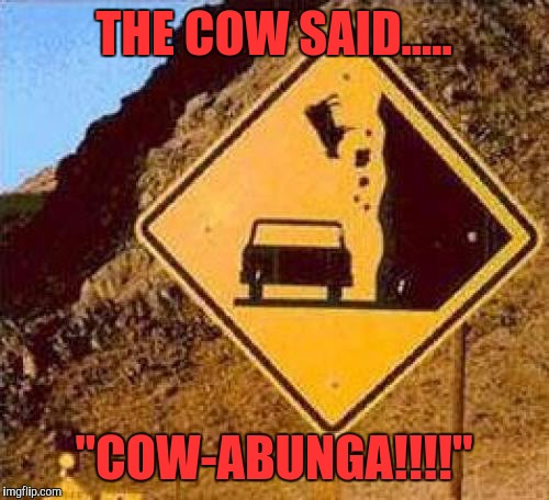 "The Thrill |  THE COW SAID..... ""COW-ABUNGA!!!!"" 