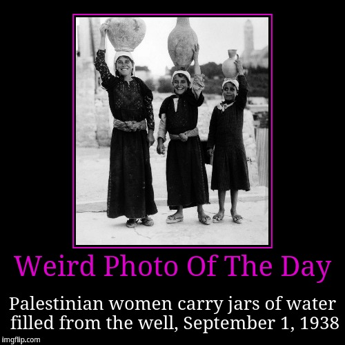 Palestinian women carry jars of water | Weird Photo Of The Day | Palestinian women carry jars of water filled from the well, September 1, 1938 | image tagged in funny,demotivationals,weird photo of the day | made w/ Imgflip demotivational maker