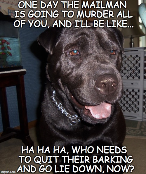It'll Serve You Right | ONE DAY THE MAILMAN IS GOING TO MURDER ALL OF YOU, AND I'LL BE LIKE... HA HA HA, WHO NEEDS TO QUIT THEIR BARKING AND GO LIE DOWN, NOW? | image tagged in funny dogs,labrador | made w/ Imgflip meme maker