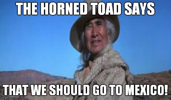 THE HORNED TOAD SAYS THAT WE SHOULD GO TO MEXICO! | made w/ Imgflip meme maker