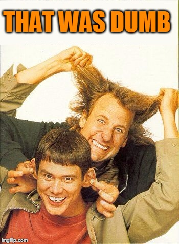 DUMB and dumber | THAT WAS DUMB | image tagged in dumb and dumber | made w/ Imgflip meme maker