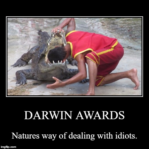 The Darwin Awards. | DARWIN AWARDS | Natures way of dealing with idiots. | image tagged in funny,demotivationals | made w/ Imgflip demotivational maker