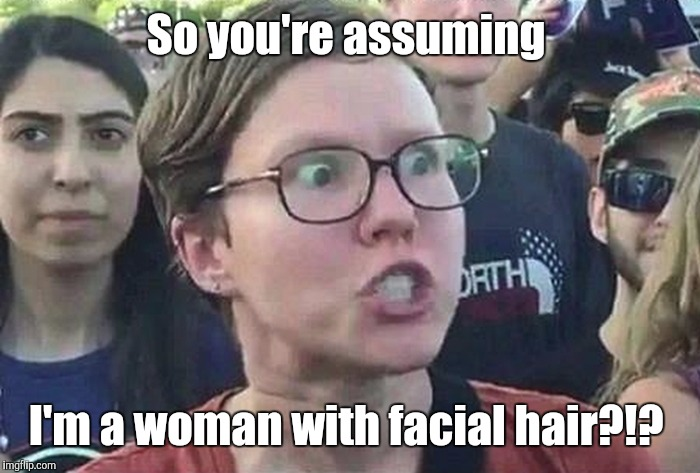 1b8nc8.jpg | So you're assuming I'm a woman with facial hair?!? | image tagged in 1b8nc8jpg | made w/ Imgflip meme maker