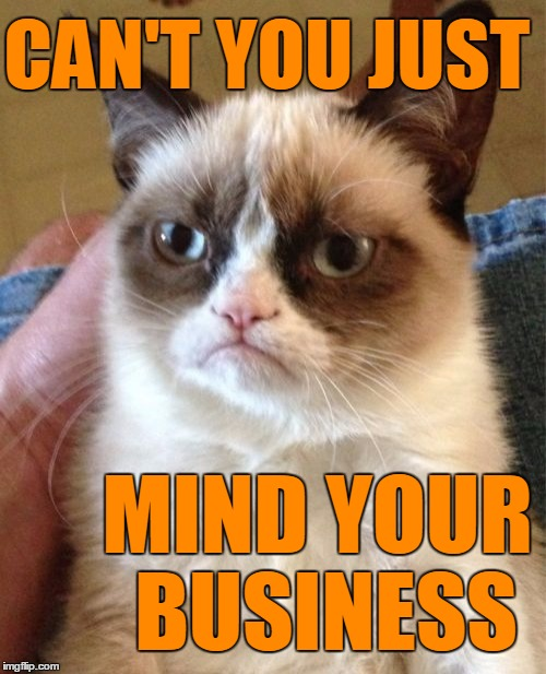 Grumpy Cat Meme | CAN'T YOU JUST MIND YOUR BUSINESS | image tagged in memes,grumpy cat | made w/ Imgflip meme maker