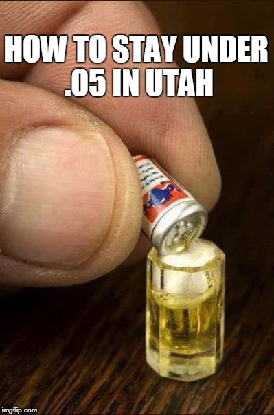 Utah beer small | HOW TO STAY UNDER .05 IN UTAH | image tagged in beer,small,utah,dui | made w/ Imgflip meme maker
