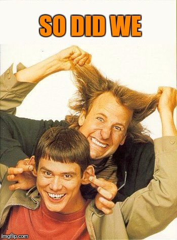 DUMB and dumber | SO DID WE | image tagged in dumb and dumber | made w/ Imgflip meme maker