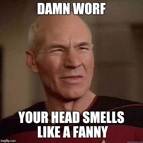 Dafuq Picard | DAMN WORF YOUR HEAD SMELLS LIKE A FANNY | image tagged in dafuq picard,memes,family guy,funny cats | made w/ Imgflip meme maker