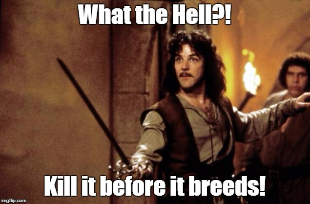 Princess bride | What the Hell?! Kill it before it breeds! | image tagged in princess bride | made w/ Imgflip meme maker
