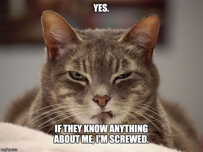 Sarcasm Cat | YES. IF THEY KNOW ANYTHING ABOUT ME, I'M SCREWED. | image tagged in sarcasm cat | made w/ Imgflip meme maker