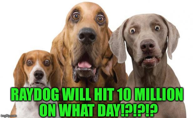 When does the old dog hitb10 mil? Enter on guess on AndrewFinlayson's meme: https://imgflip.com/gif/1ldm7t | RAYDOG WILL HIT 10 MILLION ON WHAT DAY!?!?!? | image tagged in surprised dogs,andrewfinlayson,raydog,guess the date context,matrix icon,memes | made w/ Imgflip meme maker