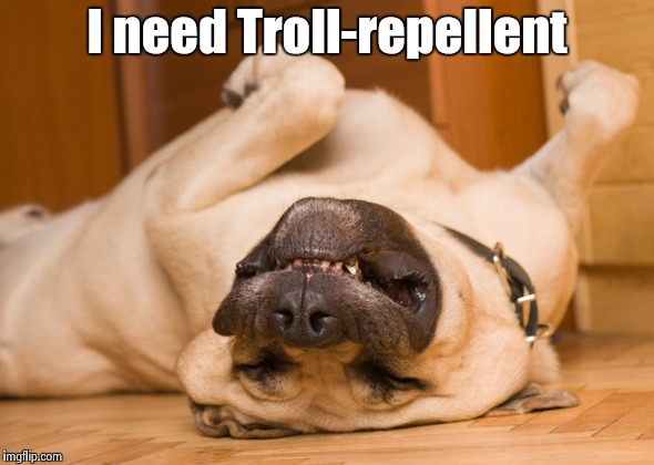 Sleeping dog | I need Troll-repellent | image tagged in sleeping dog | made w/ Imgflip meme maker