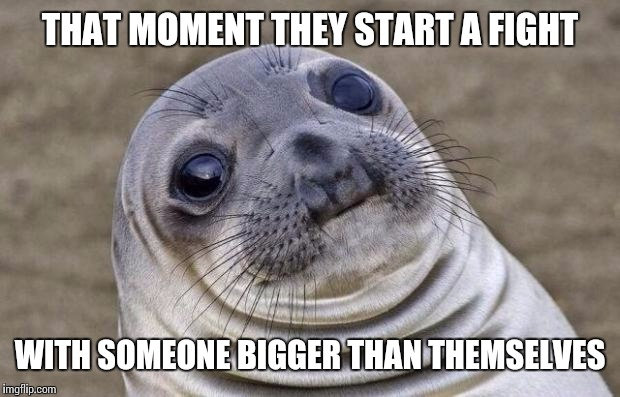 Awkward Moment Sealion Meme | THAT MOMENT THEY START A FIGHT WITH SOMEONE BIGGER THAN THEMSELVES | image tagged in memes,awkward moment sealion | made w/ Imgflip meme maker