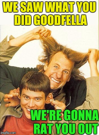 DUMB and dumber | WE SAW WHAT YOU DID GOODFELLA WE'RE GONNA RAT YOU OUT | image tagged in dumb and dumber | made w/ Imgflip meme maker