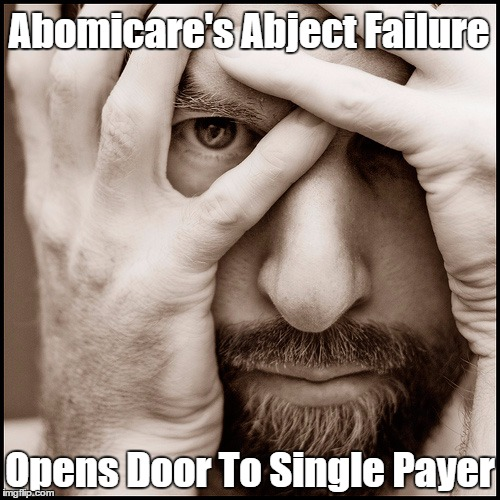 Abomicare's Abject Failure Opens Door To Single Payer | made w/ Imgflip meme maker