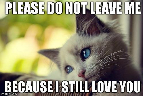 First World Problems Cat |  PLEASE DO NOT LEAVE ME; BECAUSE I STILL LOVE YOU | image tagged in memes,first world problems cat | made w/ Imgflip meme maker