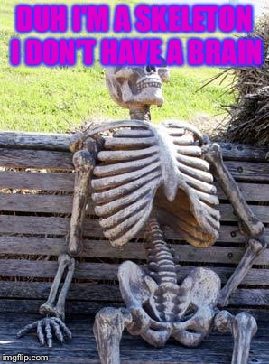 Waiting Skeleton Meme | DUH I'M A SKELETON I DON'T HAVE A BRAIN | image tagged in memes,waiting skeleton | made w/ Imgflip meme maker