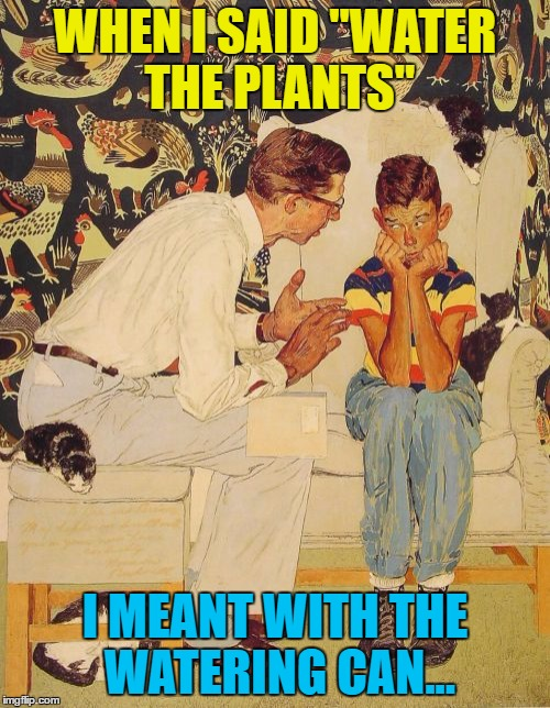 "Those poor plants... :) | WHEN I SAID ""WATER THE PLANTS"" I MEANT WITH THE WATERING CAN... 