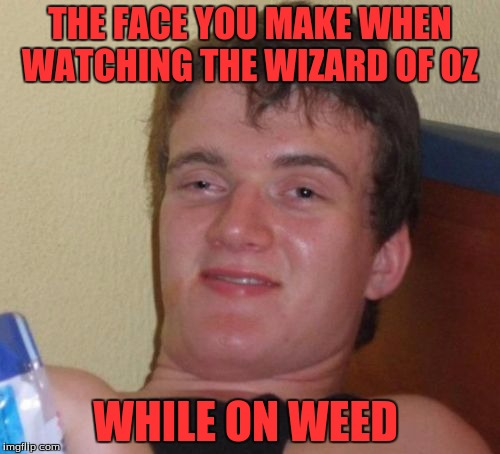 The Wizard Of 10 Guy | THE FACE YOU MAKE WHEN WATCHING THE WIZARD OF OZ WHILE ON WEED | image tagged in memes,10 guy | made w/ Imgflip meme maker